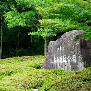 新緑の綺麗な三木山森林公園 2019.07.03