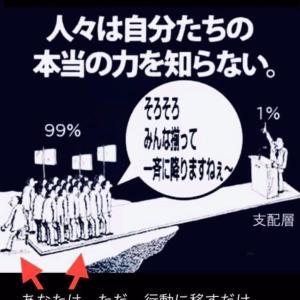1%の支配者層は 私達99%が行動を起こすだけで 存在できなくなります