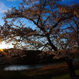 夕焼け写真が撮れる季節の到来です^^v
