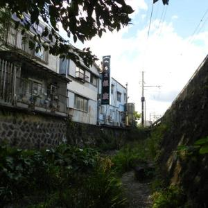 三島・湧水散歩