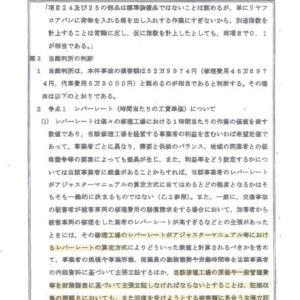 【意見】レバーレート訴訟・追記その2