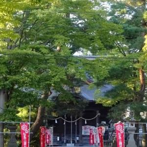 散歩道の植物(夏から秋へ)~金峯神社の杜