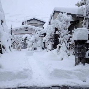 大雪の正月