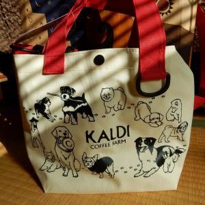 カルディ購入品 【犬の日】