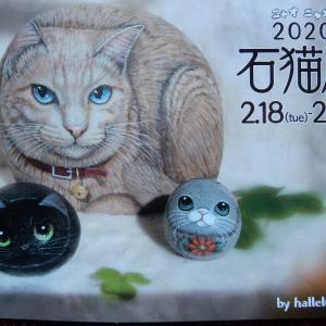 2020石猫展 2月18日~24日まで開催中