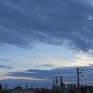 【静岡県浜松市】夕方 龍が如く見参したのは・・・