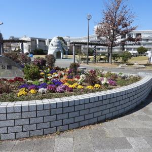 花と緑の街 浜松  野口公園と浜松駅前のお花たち