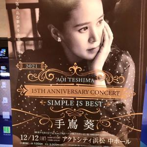 コンサートチケット初めて購入しました 手嶌葵さん