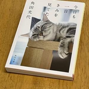 ねこの日に読んだ本 〜にゃ~にゃ~の日に寄せて