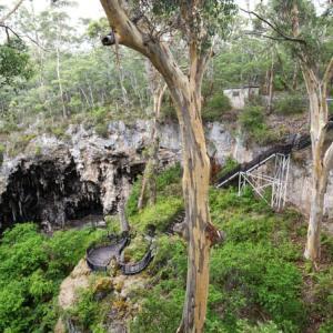 カリの森の底深く 〜Lake Cave にて