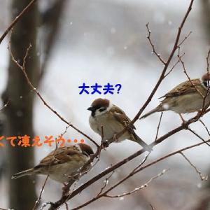 雪の日だって二人でいれば暖かい~♪