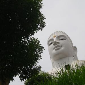 『 スリランカピリ辛仏教巡り エピソード11 』