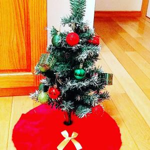 ●Merry Christmas●
