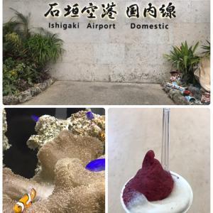 【石垣島その2】食いしん坊バンザイ\(^o^)/ジェラート、サータアンダギーから山羊汁まで!