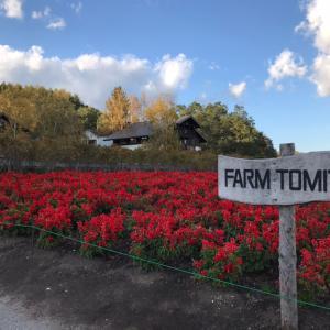 【北海道はでっかいどう!】還暦の母を連れてきたファーム富田の思い出と、ホントに青かった青い池!