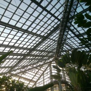 フラワーアート植物展と、タイルのトレー仕上がり。