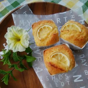 レモンヨーグルトケーキと雨の雨引観音と資格。