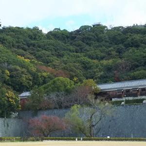 松山城はいつもそこにある・・・