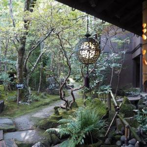 美しい風景画の中に存在しているよう 天ヶ瀬温泉「山荘 天水」(大分県日田市)