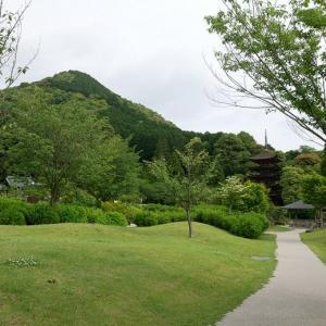 香山公園の「うぐいす張りの石畳」←初めて知りました(山口県山口市)