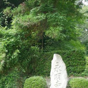 覚皇山 永明寺(かくおうざん ようめいじ)の御朱印 (島根県津和野町)