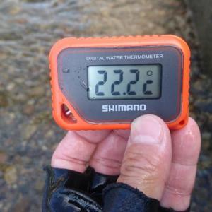 2018/08/13 南飛騨 益田川 アマゴ 34cm ~高水温でグロッキー