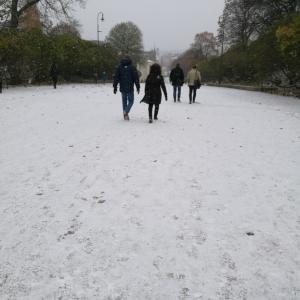 【ノルウェー】初雪でやんした。