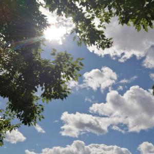 【夏休み2020】夏休みが終わる頃。