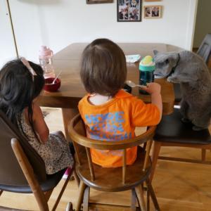 3人の子どもたちと夏の話。
