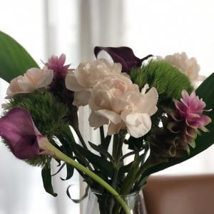 たまにはピンクのお花も