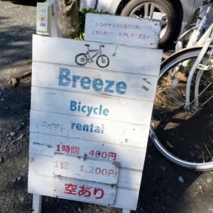 鎌倉でレンタサイクル散歩♪冬の海は穏やかで気持ちいいね