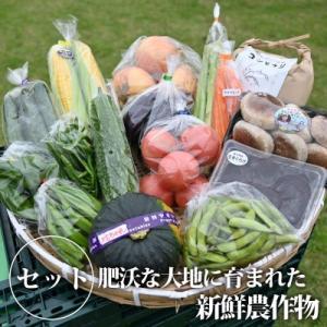 【お取り寄せ】野菜高騰中♪3割引きの栃木県の産地直送野菜