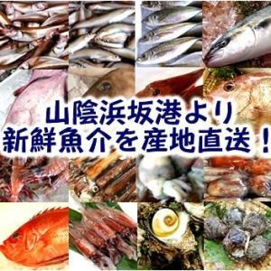 【お取り寄せ】毎週日曜はお得♡山陰浜坂漁港直送「朝とれおまかせ鮮魚・魚介詰め合わせ」