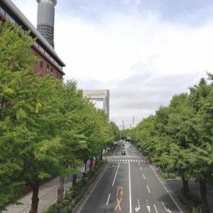 行ってきたよ♪四連休初日の横浜元町チャーミングセール&中華街