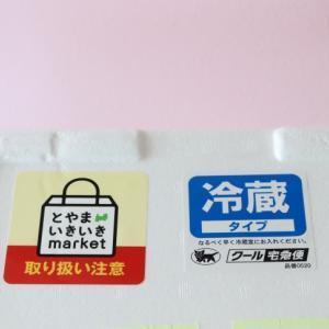 到着♪富山湾「朝採れキトキト氷見産鮮魚BOX」