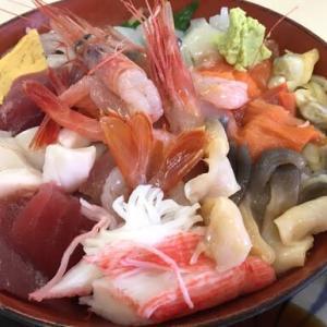 苫小牧マルトマ食堂、魚金食堂~三浦やの海鮮丼120kmRIDE