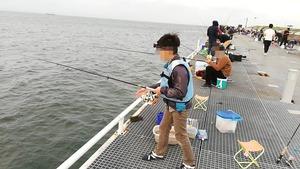 知多半島でサビキ釣り
