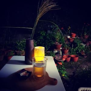 庭でお月見