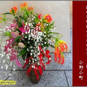 image3150 花の色は