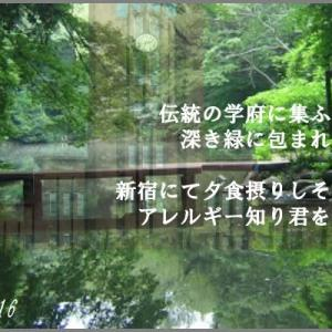 夢幻希歌15-16 ゆめ・・・まぼろし・・・