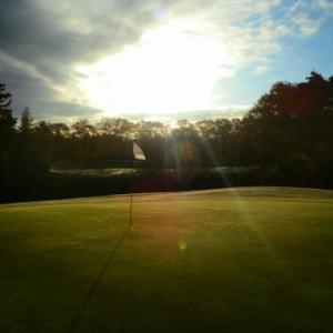 熱いビート アカゲラ見つけ 冬ゴルフ