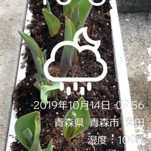 前橋競輪 G1寛仁親王牌  12 R決勝