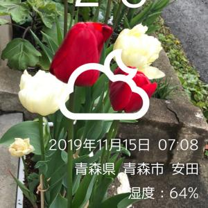 福井競輪 F1    11R特選
