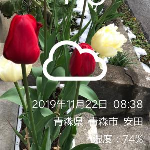 小倉競輪 G1競輪祭 12 R準決勝