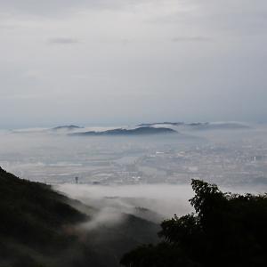 高知市街が雲海に ほぼ包まれた!