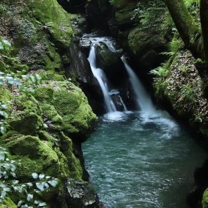 中津川上流の無名滝
