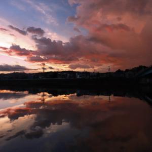 ある日の鏡川橋下からの夕焼け