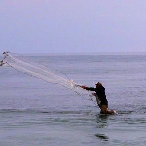 太平洋の魚を一網打尽だーっ!