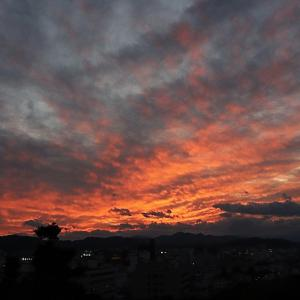 高知城黒鉄門からの夕焼け