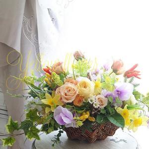 春のはじまりは…黄色のお花で